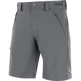 Salomon Wayfarer Spodnie krótkie Mężczyźni szary